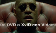 Conversione DVD in XviD 1.0 RC2 con Vidomi